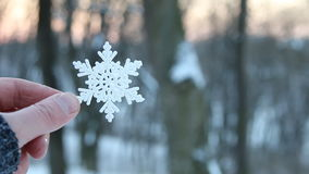 Winter concept, hand holding a snowflake, copy space stock footage