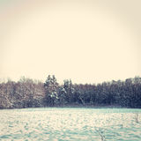 Winter conceptual image. Stock Image