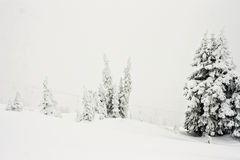 Winter Conditions in Rugged Alpine Terrain Royalty Free Stock Images