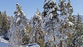 Winter Conn Wonderland Hut Snow Aerial 4k