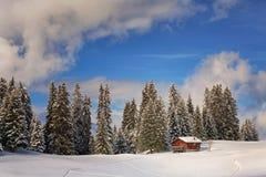 Winter_cottage Foto de Stock