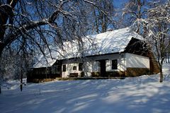 Winter cottage. Forest in winter tree with snow Royalty Free Stock Images
