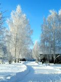 Winter in country stock photo