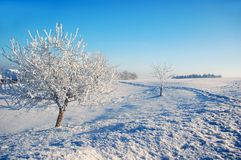 Winter in the Country Stock Photo
