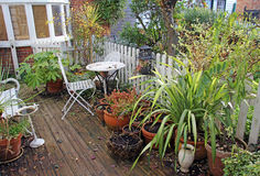 Winter country cottage garden. Photo of a winter country cottage garden with potted flowers and plants on decking stock image