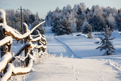 Winter country landscape with timber fence and snowy road into evergreen wood Royalty Free Stock Photography