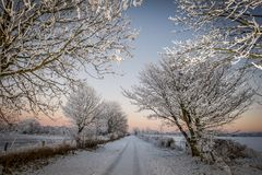 Winter country lane. Country lane covered in snow sunset tyre tracks quiet Royalty Free Stock Photos