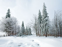 Winter country mountain landscape Stock Image