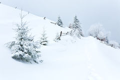 Winter country mountain landscape Royalty Free Stock Photos