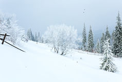 Winter country mountain landscape Stock Images