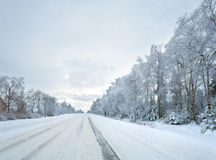 Winter country road Stock Image