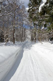 Winter Country Road Stock Images