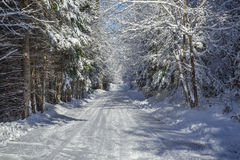 Winter country road Royalty Free Stock Photography