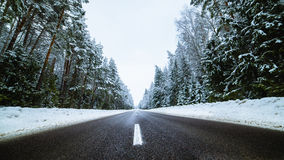 Winter country road with fir forest on the side Stock Photos