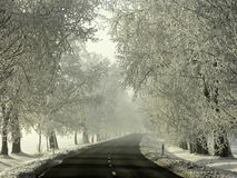 Winter country road with frosted trees. Slippery country road in winter with frost covered trees. Shot in the early morning Royalty Free Stock Photography