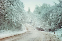 Winter country road in the snowy woods. Royalty Free Stock Photo