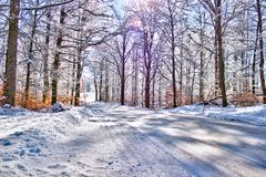 Winter country road in Sweden Royalty Free Stock Photography