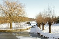 Winter in the countryside from the Netherlands Stock Photos