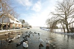 Winter in the countryside from the Netherlands Royalty Free Stock Photography