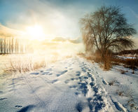 Winter in countryside Stock Photos