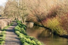 Winter in the countryside, winding path beside stream royalty free stock images