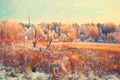 Winter countryside, Winter landscape at sunset Royalty Free Stock Image