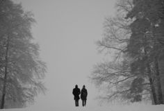 Winter couple walking between large trees royalty free stock photography