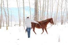 Winter cowboy Stock Photography