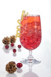 Winter Cranberry Cocktail Royalty Free Stock Photo