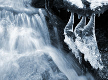 Winter creek Stock Photography