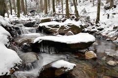 Winter creek Royalty Free Stock Image