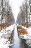 Winter creek. Creek between two avenues near Szigliget in a snowy day, Hungary Stock Photos