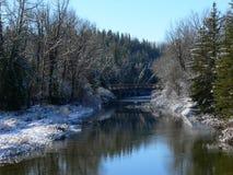 Winter Creek. Fish Creek after snowfall. Fish Creek Park, Calgary, Alberta, Canada Royalty Free Stock Images