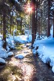 Winter creek Royalty Free Stock Photography