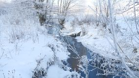 Winter creek in the forest snow, frozen branches of trees landscape nature. Winter creek in forest snow, frozen branches of trees landscape nature stock video footage