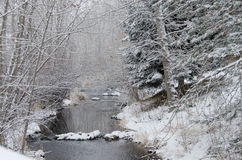 Winter Creek after a Fresh Snowfall Stock Photography