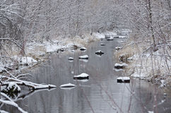 Winter Creek after a Fresh Snowfall Royalty Free Stock Photo