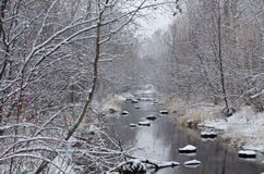 Winter Creek after a Fresh Snowfall Stock Images