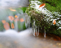 Winter creek with icicles Royalty Free Stock Images