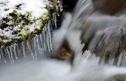 Winter creek with icicles Stock Photo