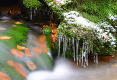 Winter creek with icicles Stock Image