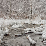 Winter Creek Landscape. Landscape of a tree surrounded creed in winter Stock Photography