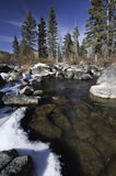 Winter creek in mountains of Utah Stock Photography