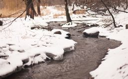 Winter creek in the park Royalty Free Stock Images