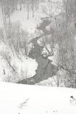 Winter creek. Snowfall Stock Photo