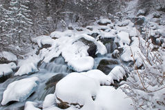Winter creek during snowfall Stock Images
