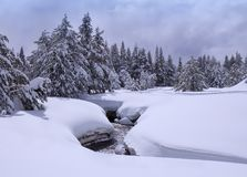 Winter creek in snowy forest Royalty Free Stock Photo