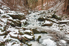 Winter creek in  the valley in  parkland in February Stock Photography
