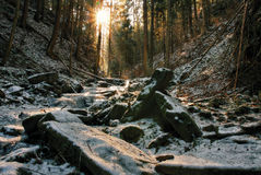 Winter creek in  the valley in  parkland in February Royalty Free Stock Photos