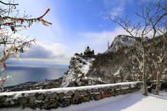 Winter in the Crimea. On the southern shore royalty free stock image